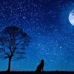 2021年 新月・満月・ボイドタイムカレンダー
