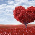 【当たる心理テスト】恋人の愛情本気度診断